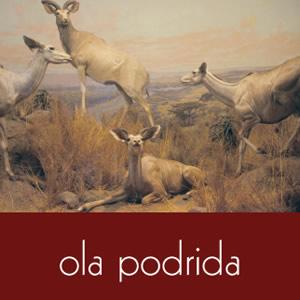 OlaPodrida_outsidecover